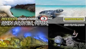 Sukamade Beach Ijen Crater Tour Package 3 Days