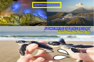 Turtle Beach Bromo Ijen Tour Package 4 Days